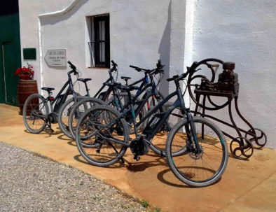 Bike rental and winery visit barcelona