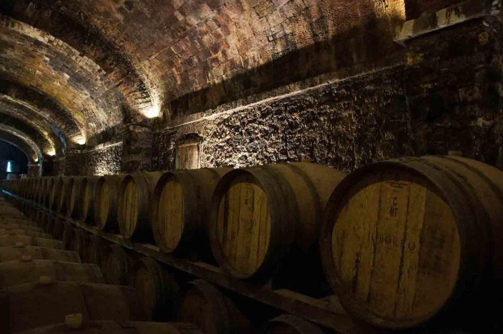 visit wine cellar barcelona