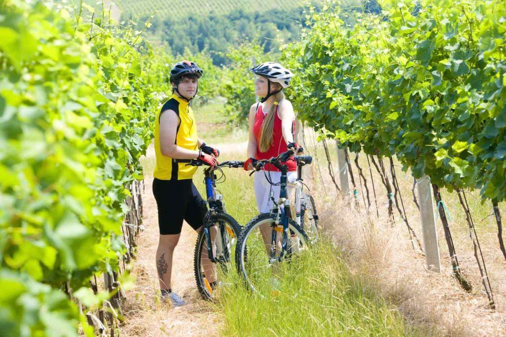 bike wine tour barcelona